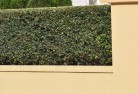 Banora Point QLD Decorative fencing 30
